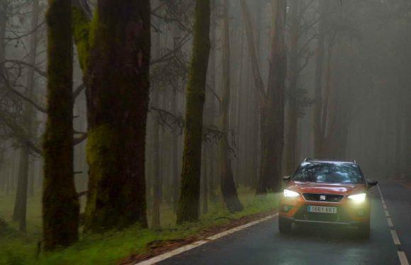 Сезонски совети за безбедно возење во есен (видео)